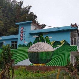 江西墙体彩绘厂家-农村晒米房屋彩画