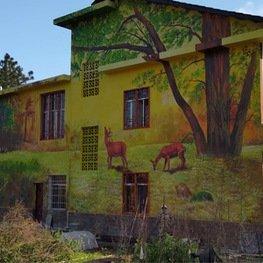 江西雕塑厂家外墙体彩绘森林小鹿彩色画